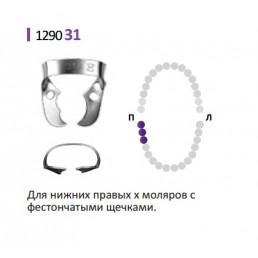 Кламп для раббер дам (№31) Medenta (для Моляров)