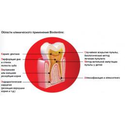 Биодентин (Biodentine) (15+15 капсул) - цемент для пломбирования каналов Septodont              (можно купить 5+5капсул. Обращайтесь к менеджерам)