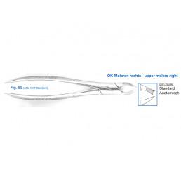 11-89 Щипцы для удаления зубов верхние, моляры правые