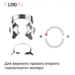 Кламп для раббер дам (№55) Medenta (Для молочных и сменных моляров)